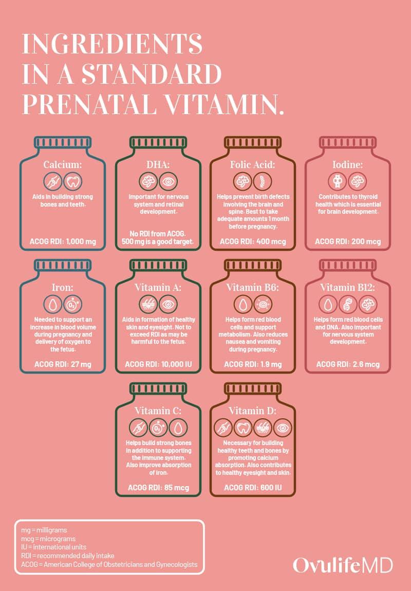 Prenatal Infographic