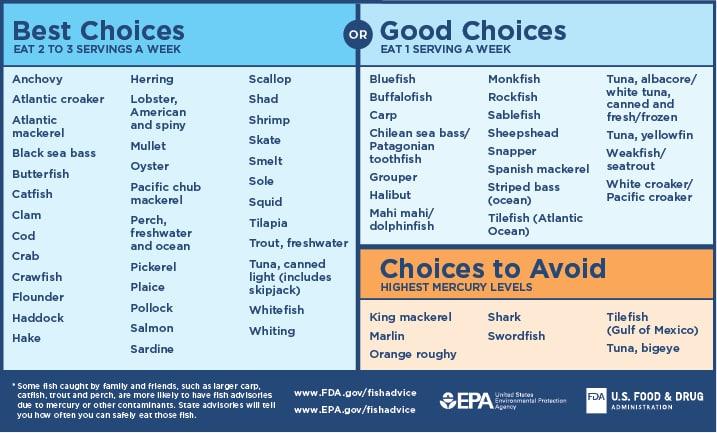 Fish Advice infographic